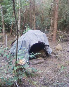 Bender tent