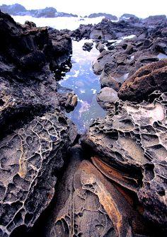 Tafoni sandstone formation, just north of Bean Hollow, California by Joe Ganster