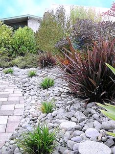 Planting beds filled with river rock. Very little lawn in back yard.