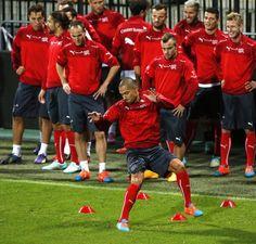 Switzerland training
