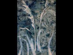 a cyanotype winters walk - YouTube Alternative Photography, Cyanotype, Youtube, Painting, Painting Art, Paintings, Painted Canvas, Youtubers, Drawings