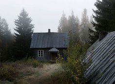 Abandoned House in the Woods Taken Over by Wild Animals. Finnish photographer Kai Fagerström presents unique photo series, where he captures wild animals making themselves comfortable in abandoned houses in the woods of Finland. Posted to Desert Hearts on Abandoned Mansions, Abandoned Buildings, Abandoned Places, Haunted Places, Cabins In The Woods, House In The Woods, Cabana, Woodland House, Turbulence Deco
