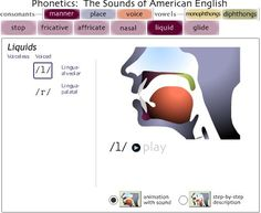Using an online web source: One of the best websites for teaching articulation, especially to adults or phonetics to students Articulation Therapy, Articulation Activities, Speech Therapy Activities, Language Activities, Aphasia Therapy, Cognitive Therapy, Speech Pathology, Speech Language Pathology, Speech And Language