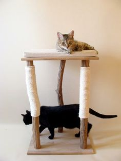 Cat tree 'Andromède': www. A dog, or companion animal, is a dog kept primarily Diy Cat Tree, Cat Playground, Cat Condo, Cat Room, Pet Furniture, Cat Accessories, Cat Supplies, Pet Home, Diy Stuffed Animals