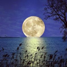 """""""If the sun does not light your way up, simply ask the moon."""" Yannick Hewang"""
