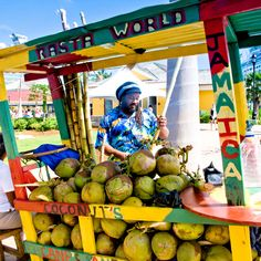 Jamaica, the coconut man!                                                                                                                                                                                 More