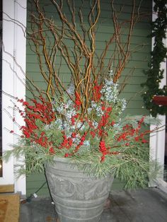 christmas pots with fresh greens & curly willow - Google Search