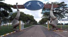 CARNAVAL SEM LICITAÇÃO CONCLUÍDA - A Prefeitura de Avaré divulgou a programação do Carnaval 2017 que será realizado no Costa Azul e em uma das pistas cobertas do Parque de Exposições Dr. Fernando Cruz Pimentel