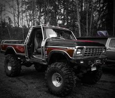 1979 F350 Old Ford Pickup Truck, Old Ford Pickups, Big Ford Trucks, Classic Ford Trucks, 4x4 Trucks, Ford Bronco 1996, 1979 Ford Truck, Ford 4x4, Ford Girl