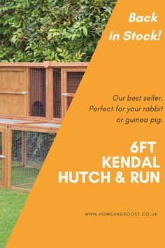 Back in Stock! Our customers favourite hutch and run combo. Perfect for your bunny or guinea pig. Rabbit Run, Pet Rabbit, Rabbit Hutches, Hamsters, Guinea Pigs, Rabbits, How To Look Pretty, Bunny, Running