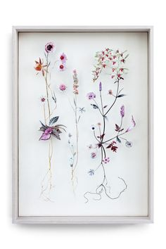 Flower construction - 3D collages of real pressed flowers and cut out flower illustrations painstakingly pinned in place.  Beautiful.