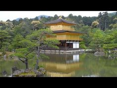 Kyoto Sightseeing Tour including Nijo Castle 2017