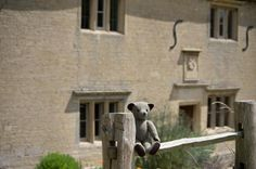 #TweedyTed popped into #Woolsthorpe Manor to check out Sir Isaac Newton's birthplace and apple tree! @nationaltrust