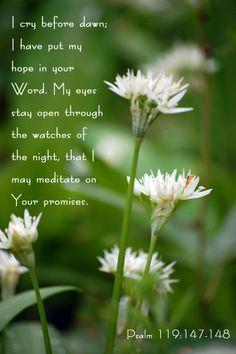 Psalm 119:148-149