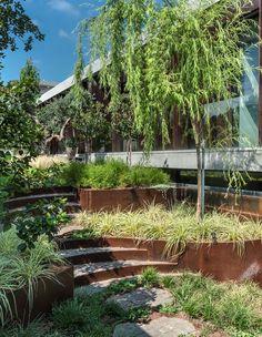 Garden Stairs, Gardens, Plants, Outdoor Gardens, Garden Steps, Plant, Garden, House Gardens, Planets