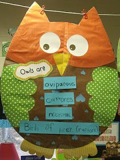 Owl anchor chart