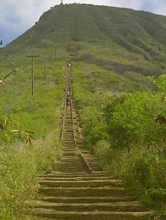 Koko Head Trail. Oahu. This hike is killah...first time I've ever almost thrown up from such a workout.  but the view is worth it