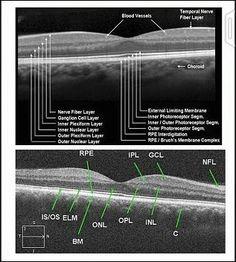 Layers Retina attachment.php?s=98d74b0e7838c09802cd8ec8401127c6&attachmentid=1342&d=1439207796&thumb=1