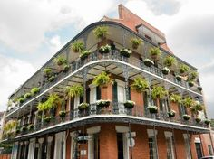 Become immersed in the quaint Southern architecture found only in Louisiana. From modest shotgun houses to grand townhouses, New Orleans' sense of color and artistry transform its buildings into visual treats.