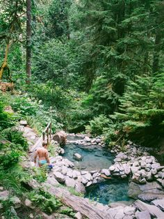 Cougar, Terwilliger Hot Springs