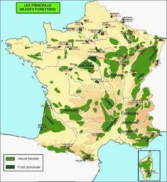 Forets-de-France-Massif-forestier-Foret-domaniale-ONF-office-nationale-des-forets-arboretum-feuillus-coniferes-garrigues-et-maquis-5.