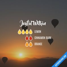 Joyful Within - Essential Oil Diffuser Blend