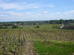 Du côté de chez moi : le Château du Clos de Vougeot | Trendy Escapes