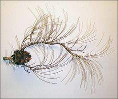 A small pine branch has been hand formed from copper. Each copper pine cone petal has been hand cut and skillfully arranged to create a most realistic pine cone.  Pine needles  are gently curved producing a soft windblown effect. The pine needles may  be ordered in solid brass or an oxidized patina giving the sculpture an even more realistic appearance. May be used indoors or out. Also available in Medium, Large, or Custom sizing. Large size features 3 hand crafted pine cones.