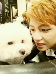 Taehyung // are we not going to talk about how done that dog looks
