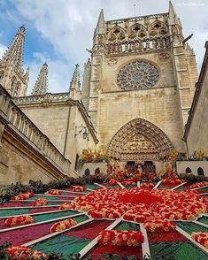 Catedral de Burgos Espanha!  Mais fotos incríveis na bio @blogmundodeviagens   #vision_spain #_lookatme_spain #world_spain #espanamylove #catchclick_spain #great_captures_spain #be_one_sacro #igrejasemfoco via @tour_espana