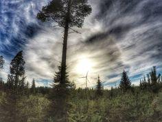 #ourfinland #thisisfinland #bestplaces #sunset #igsunset #ig_great_pics #ig_photooftheday #ig_Scandinavia #ig_finland #discoverfinland #naturephotography #finland #luontokuva #luontokuvaus #ultimate_wildlife #earthpix #mtvsaa #ExplorindGlobe #traveling #travelgram #landscape #photooftheday #landscape_lovers #finnishboy #travelphotography #finnishboy #finnishnature #lapland #followme #simo