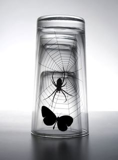 butterfly and spider glass set by propaganda Designer: Chaiyut Plypetch