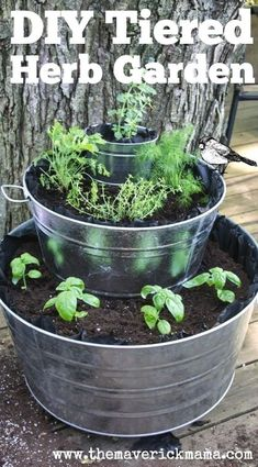 Organic gardening tip. Do you enjoy designing your own personal organic vegetable garden? Here are some green gardening tips that should help you in the best direction.