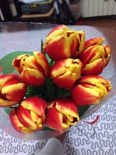 Fresh tulips on Vday from loving hubbs!