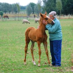 THE HORSEBREEDER, A SPECIAL BOND! by Magda indigo, via 500px
