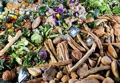 If food waste were a country it would rank as the third highest national emitter of greenhouse gases (The Guardian)  Each year 1.3bn tonnes of food, about a third of all that is produced, is wasted, including about 45% of all fruit and vegetables, 35% of fish and seafood, 30% of cereals, 20% of dairy products and 20% of meat. Meanwhile, 795 million people suffer from severe hunger and malnutrition.   The environmental impact of food loss and waste is high. The carbon footprint of food…