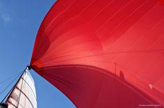 Spi - 2006 #sailing