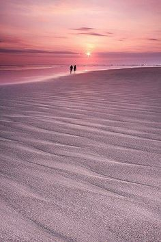 pink beach, beautiful sunset