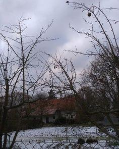 winter mood Pisa, Cottage, Snow, Winter, Outdoor, Winter Time, Outdoors, Cottages, Outdoor Games