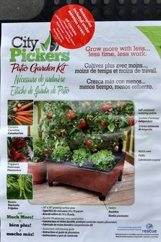 City Picker: Grow Tomatoes on your Porch, Patio or Deck Backyard, Patio, Growing Tomatoes, Dream Garden, The Great Outdoors, Container Gardening, Deck, Vegetables, City