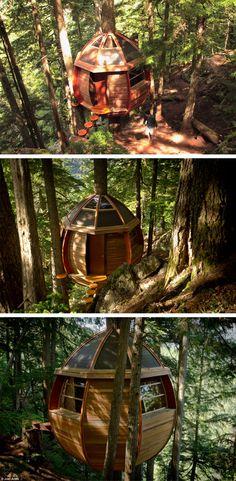 Casa na árvore em formato de ovo