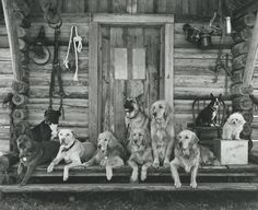 BRUCE WEBER (B. 1946) THE GANG AT LITTLE BEAR RANCH, MONTANA, 1996 SILVER PRINT. ON THE REVERSE, SIGNED, TITLED, DATED AND NUMBERED 9/30 IN PENCIL. MOUNTED AND FRAMED.  Sotheby's