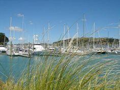 Gulf Harbour Auckland New Zealand, Wanderlust, Travel, Viajes, Destinations, Traveling, Trips