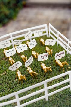 To place guests at their Kentucky wedding, this couple spray-painted plastic horses gold, drilled a small hole in each, and inserted wires to secure the cards. They set the steeds atop sod; the bride's mother made the white fence that surrounds the corral.