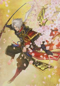 Samurai Warriors- Nobuyuki Sanada