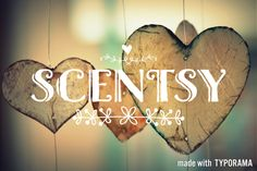 Shop my website! You'll be glad you have me as your Scentsy consultant  www.kiley13.scentsy.us