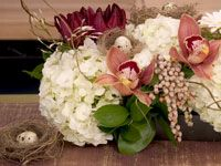 Easter centerpiece with wren nests, quail eggs and cymbidium orchids - a beautiful and sophisticated approach to the table decor.