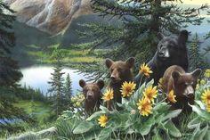Basking in the Balsams, Wildlife bear art by Kevin Daniel. Animal Paintings, Animal Drawings, Drawing Animals, Bear Art, Wildlife Art, Black Bear, Find Art, Framed Artwork, Giclee Print