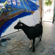 Studio goat comes by to help paint but is let go after trying to eat brushes. You can see his alpaca buddy in the background.
