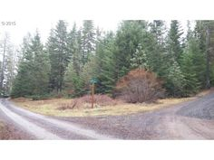 20 MILL RD, APPLETON, WA 98602 ⋆ Klickitat County Land Sales, Real Estate Services